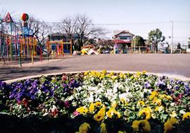 大泉富士幼稚園 花壇